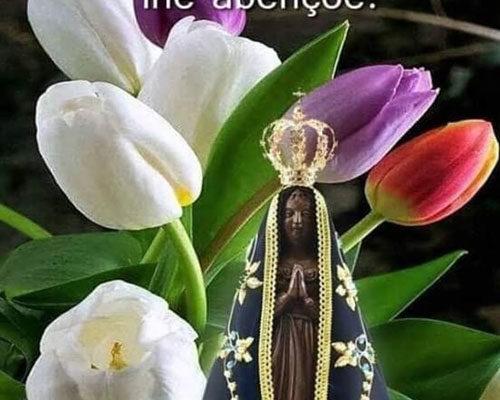 Boa Noite Benção da Virgem Maria
