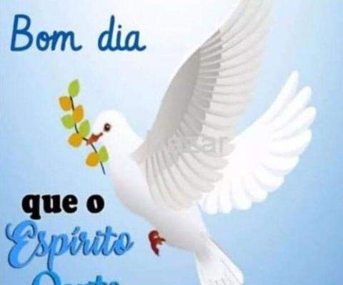 Que o Espírito Santo te oriente e te ilumine