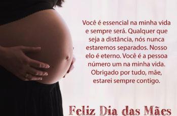 Obrigado por tudo mãe estarei sempre contigo