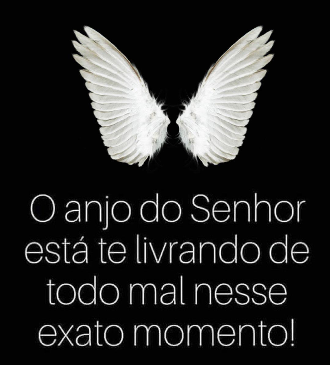 O anjo do Senhor